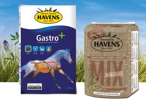 Feed for racehorses